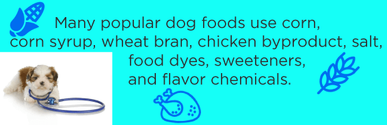 Many popular dog foods use corn, corn syrup